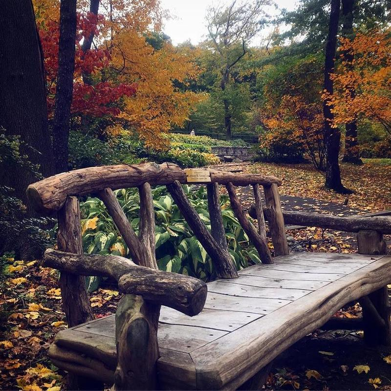 Romance in nyc, bench in asian gardens