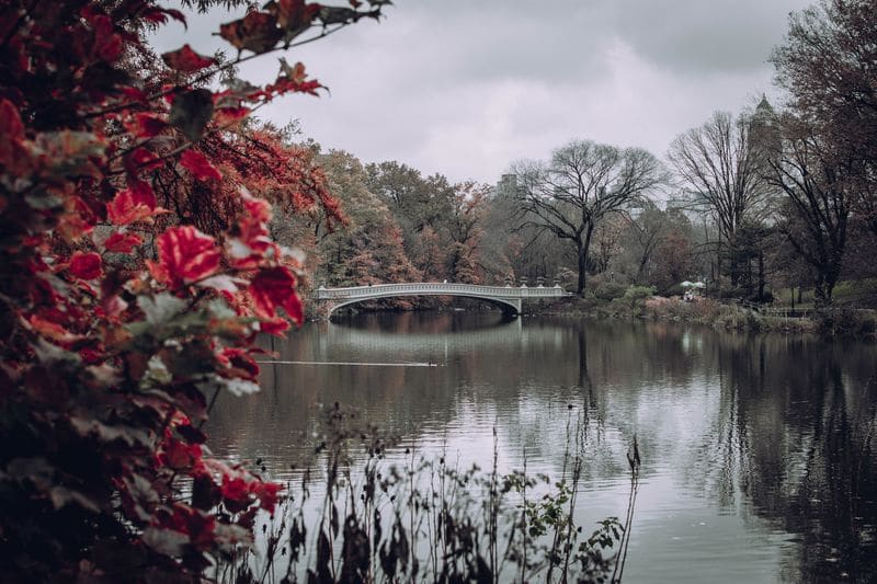 Bow Bridge is one of the most romantic spots in Central Park